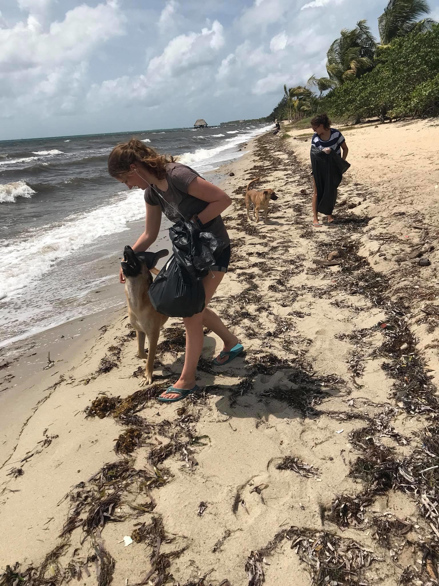 Projects Abroad Conservation volunteering for groups in Belize beach cleanup